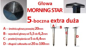 KUTE MORNING STAR